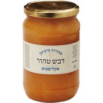 Honey Israeli from Eucalyptus Flowers
